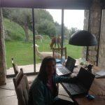 1_Arbeiten mit Alpacas Susanne Hillmer